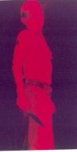 FrankPig016